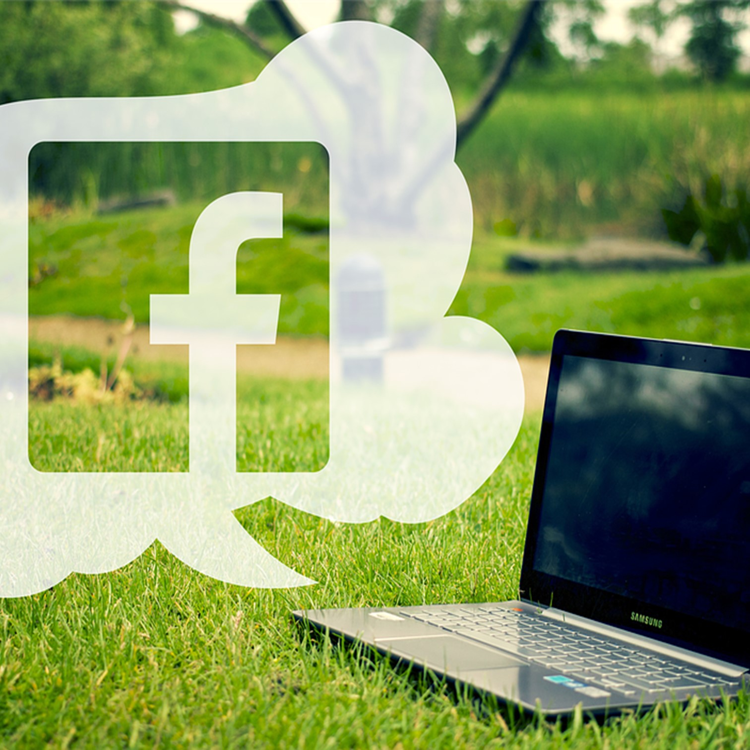 facebook et ordinateur dans l'herbe
